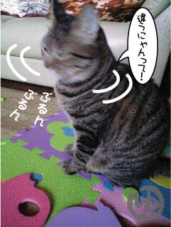猫マンガ3