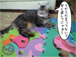 猫マンガ7