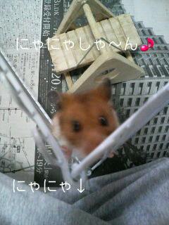 にゃにゃしゃ~ん(^^)