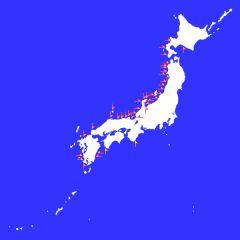 shinto_01.jpg
