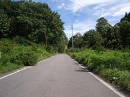 鷹巣の道路1