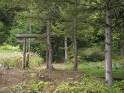 瑠壺の神社?