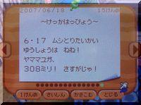 CIMG0656.jpg