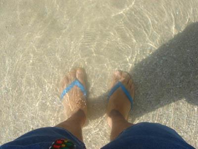 ハワイの冬の海