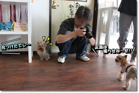 IMG_6432.jpg