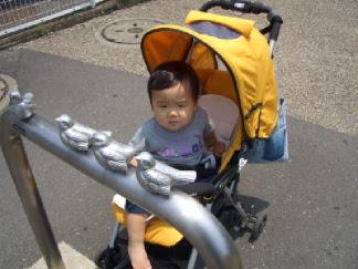 20060629_6.jpg
