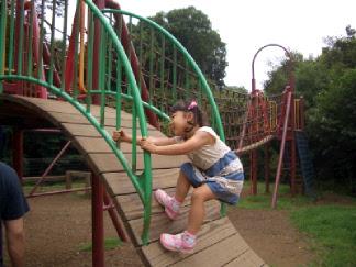 20060708_2.jpg
