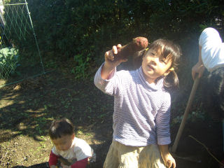 20061109_06.jpg
