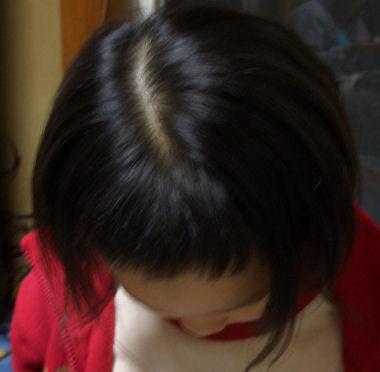 20070311_02.jpg