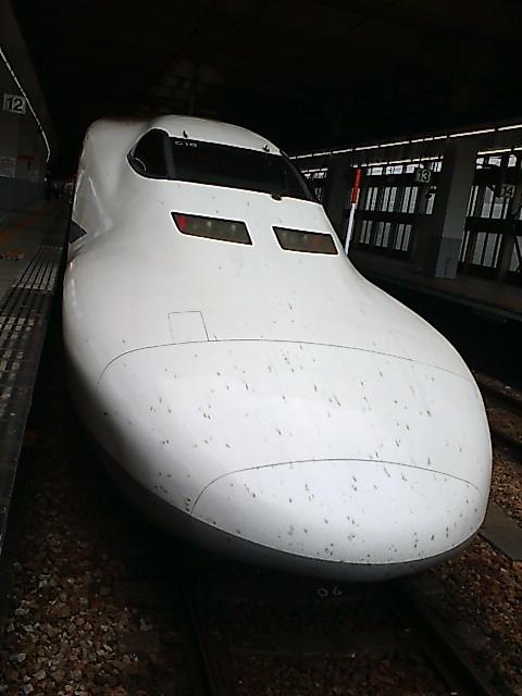 F1010027.jpg