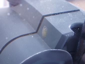 更に発見された卵01