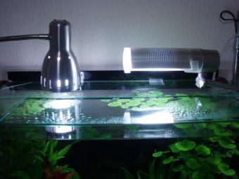 水槽のライト