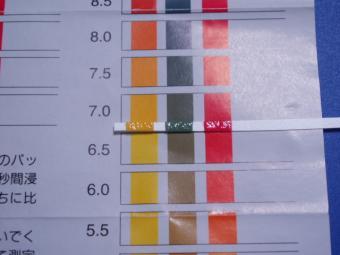 水質試験紙1