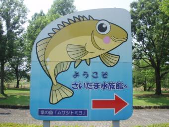 ようこそさいたま水族館へ