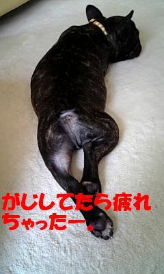 20070401102337.jpg