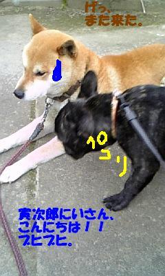 20070504105706.jpg