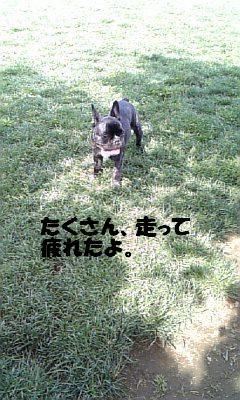 20070507012850.jpg