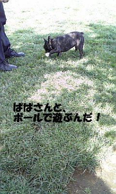 20070507012858.jpg
