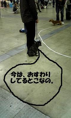 20070511005132.jpg