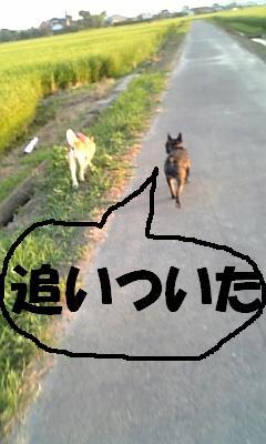 20070812085857.jpg
