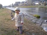 鴨川を散歩