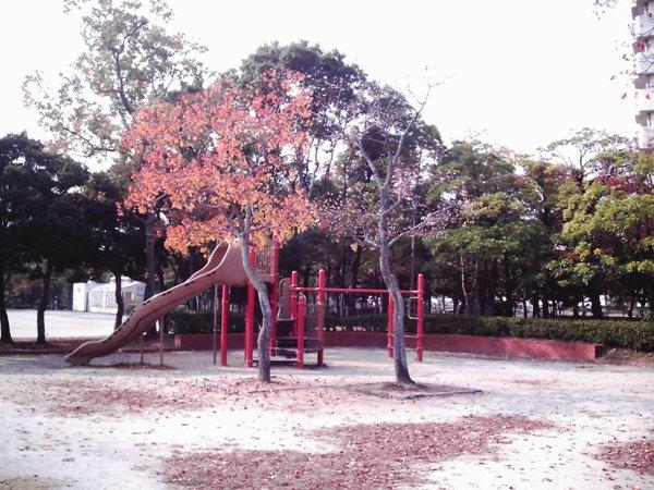 071116xiao008.jpg
