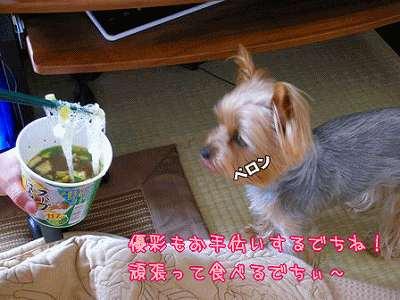 07419yuiharu.jpg