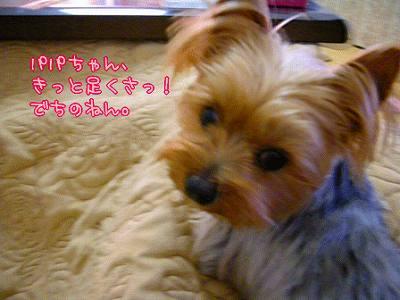 07501yui1.jpg