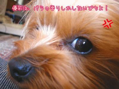 07501yui3.jpg
