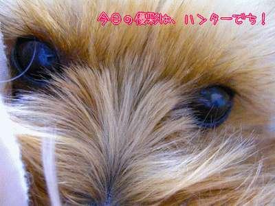 07503yui4.jpg