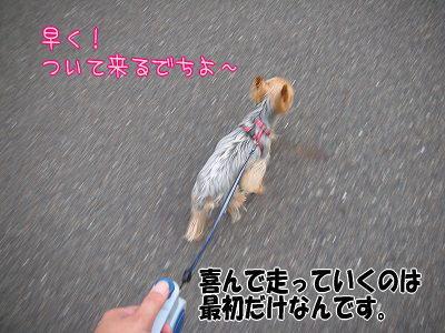07525yui.jpg