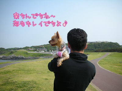 07529ikuyui.jpg