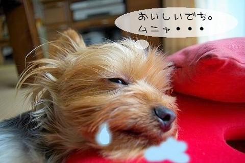 07715yui.jpg