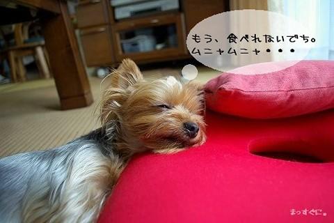 07715yui2.jpg