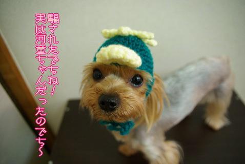 0794yui015.jpg
