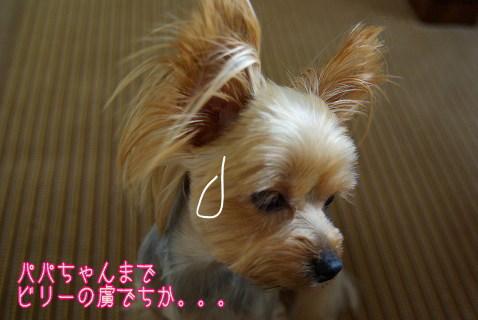 0794yui054.jpg