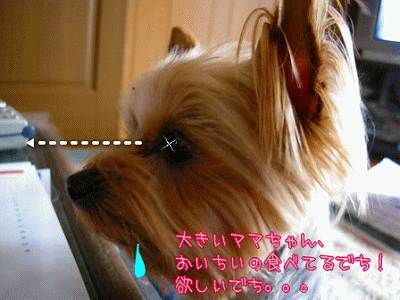 yodare0746.jpg