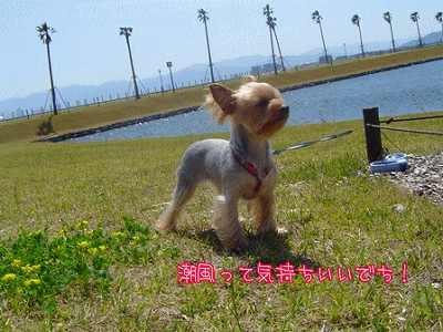 yui0745.jpg