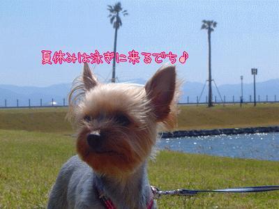 yui20745.jpg