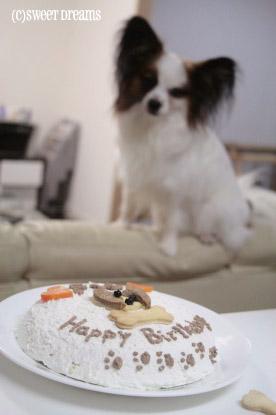 ボクのケーキ・・・。