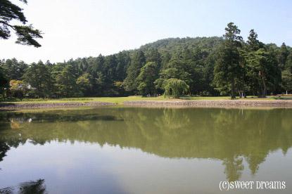 涼しげ湖。