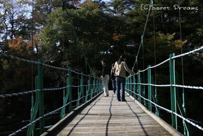 つり橋怖い((( ;゚Д゚)))ガクガクブルブル