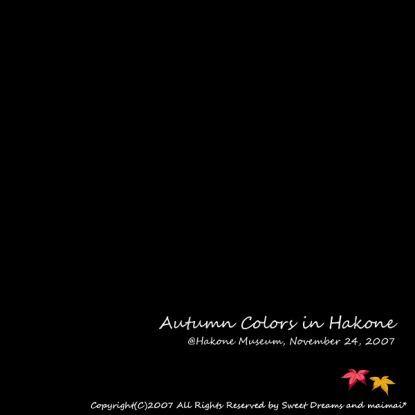 「箱根の秋色2007」PHOTOへはこちらをクリック♪