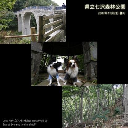 「県立七沢森林公園」PHOTOへはこちらをクリック♪