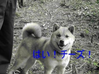 20070420143521.jpg