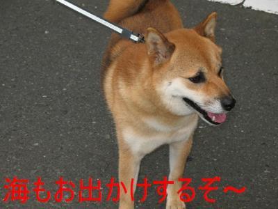 20070918131036.jpg
