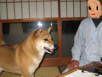 20071127125154.jpg