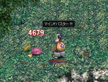 20061209102454.jpg