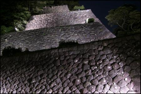 東の丸石垣夜景