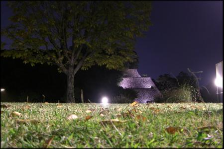 東の丸石垣夜景遠景